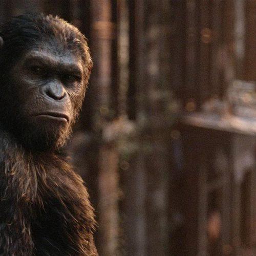 ریبوت فیلمهای Planet of the Apes