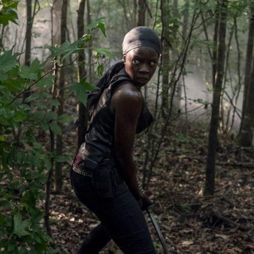 پایان سریال The Walking Dead