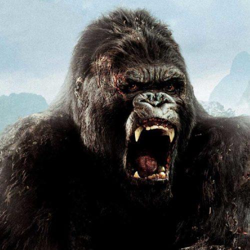 هیولای جدید سری King Kong