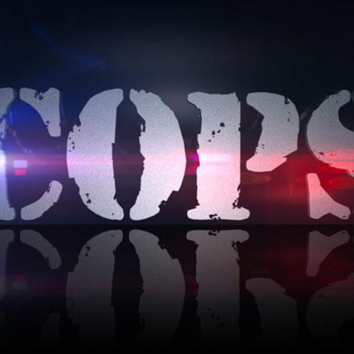 سریال واقعنمای Cops