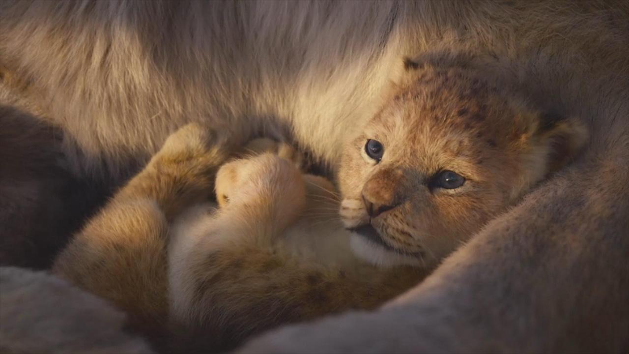 ساخت قسمت دوم The Lion King