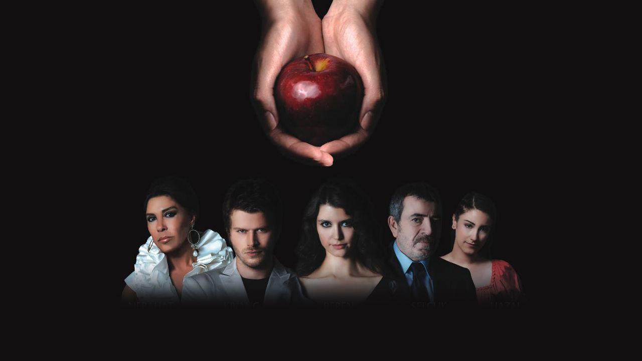 معرفی بهترین سریالهای ترکی