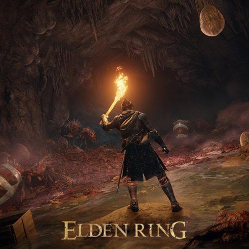 عکس دشمنان در بازی Elden Ring